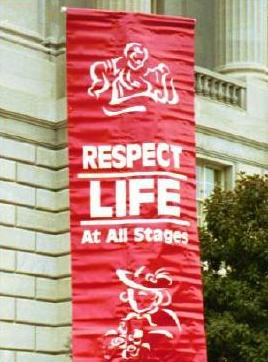 respecting life essays Free essays on respecting authority get help with your writing 1 through 30.