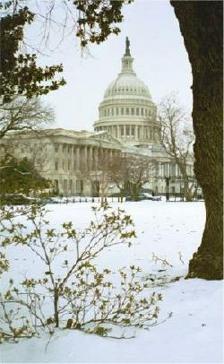 The Capitol, Washington, DC, with overcast sky and snow on the ground